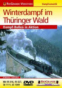 Winterdampf im Thüringer Wald